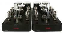 Ayon Audio EPSILON EVO Mono Power Amplifier