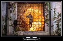 """Panasonic TX-65HZ1000B 65"""" 4K OLED TV"""