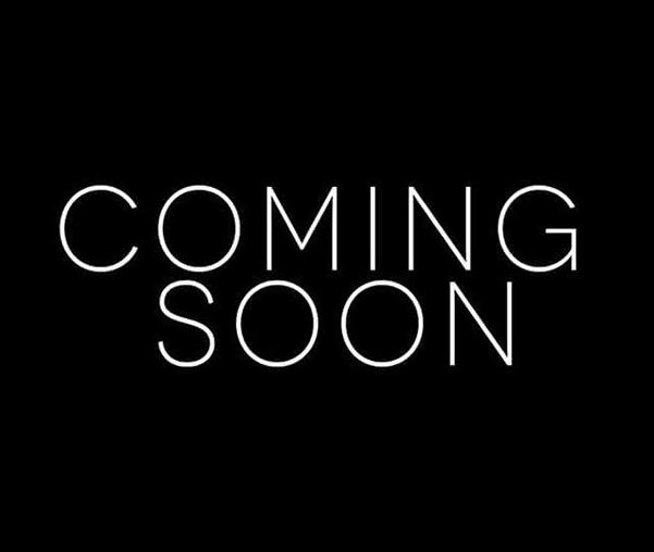 "Revel W363 6.5"" In-Wall Loudspeakers"